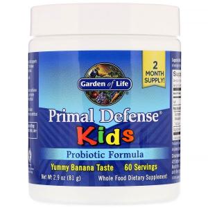 """Пробиотическая формула для детей """"основная защита"""", банан, Probiotic Formula, Garden of Life, 76,8 г"""