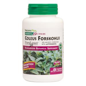 Форсколин, Coleus Forskohlii, Nature's Plus, 60 капсул